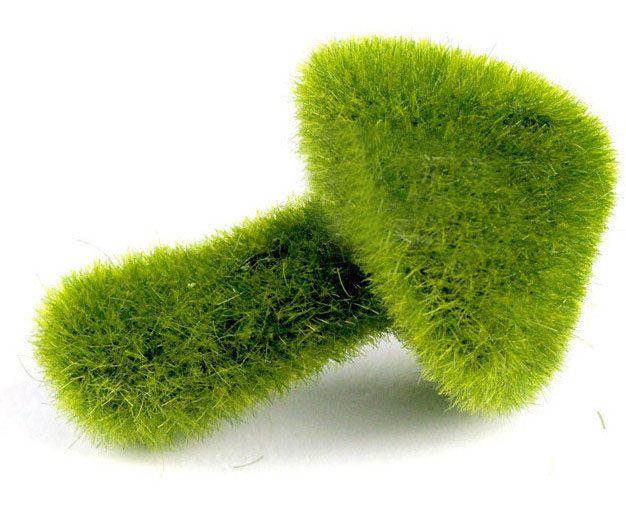 Les 25 meilleures id es de la cat gorie plantes for Livraison fleurs pas cher livraison gratuite