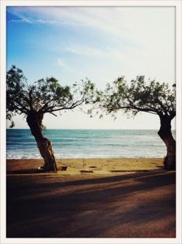 Plakias, Kreta (Crete)...
