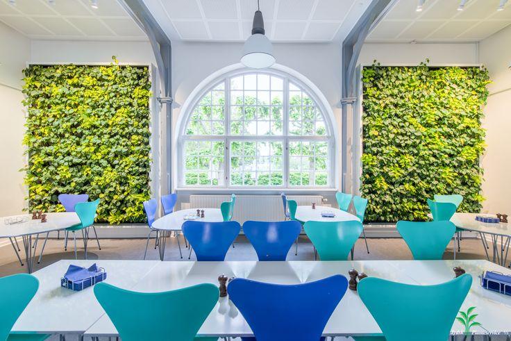 Grønne plantevægge i kontormiljø