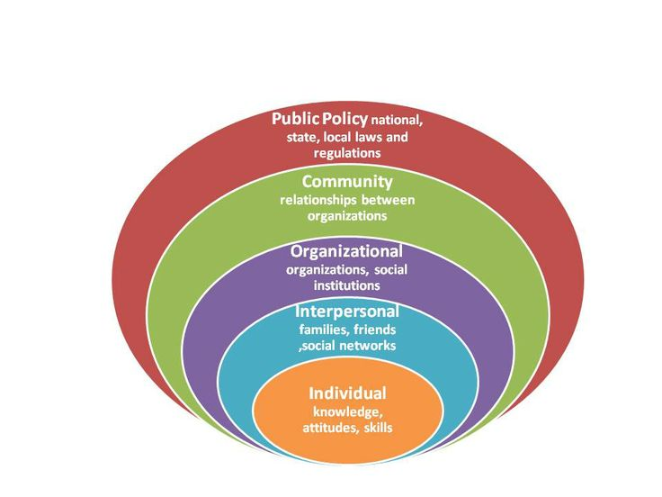 what is the social ecological model The social-ecological model can help health professionals understand how layers of influence intersect to shape a person's food and physical activity choices the model below shows how various factors influence food and beverage intake, physical activity patterns, and ultimately health outcomes.