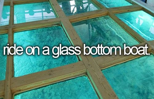 Bucket list - ride on a glass bottom boat