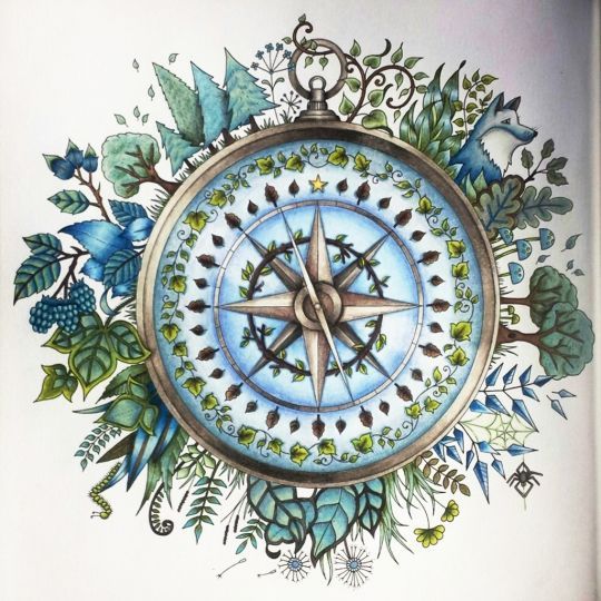 Johanna Basford   Colouring Gallery By Wendy Burnham