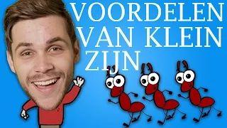 Dylanhaegens - YouTube