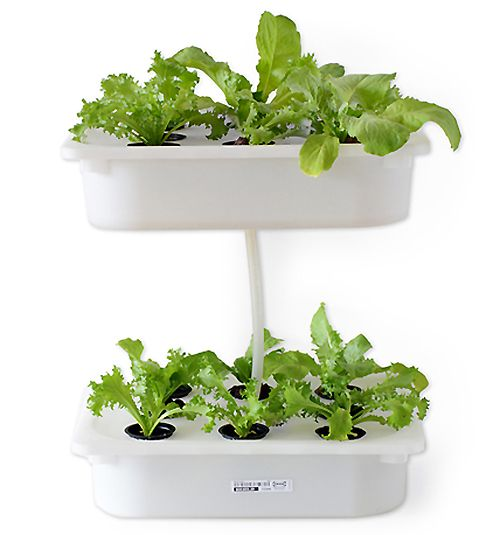 32 best mini hydroponics images on pinterest aquaponics gardening how to build indoor hydroponic gardens using ikea storage boxes urban gardens workwithnaturefo