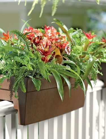 Deck railing planter - the top rail needs to be substantial enough to hold a few of these. *CONTRACTOR NOTE 4*