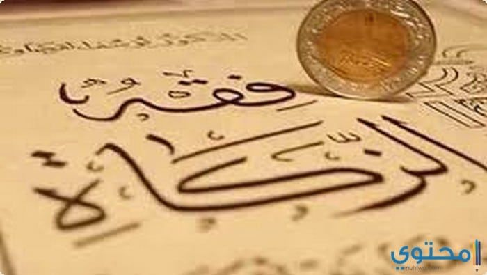 مقدار زكاة عيد الفطر 2020 من دار الإفتاء معلومات اسلامية العيد الصغير الفقراء رمضان Arabic Calligraphy Calligraphy