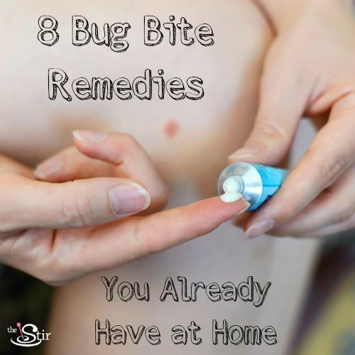 8 home cures for bug bites   No need to run to the store for these remedies!