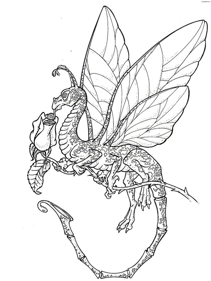 80 best Dragon Coloring images on Pinterest | Drawings, Print ...