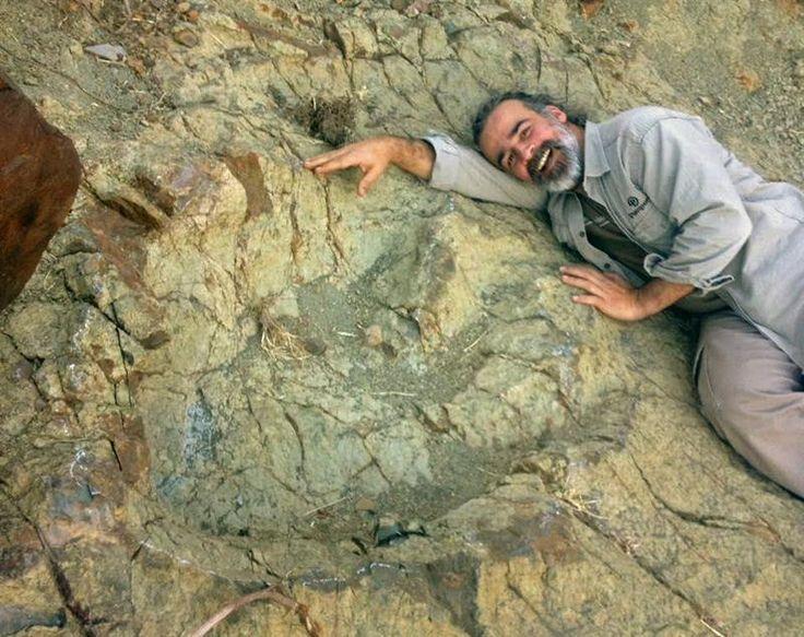 Hallan la mayor huella de un dinosaurio carnívoro en el sur de Bolivia