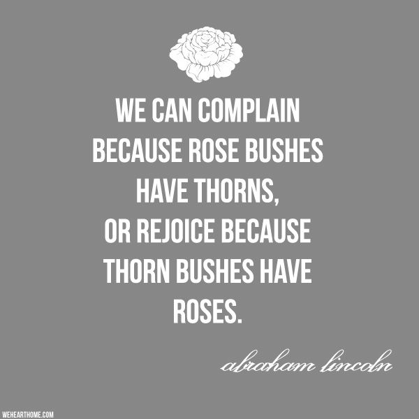 """Abraham Lincoln - """"We can complain because rose bushes have thorns, or rejoice because thorn buses have roses."""""""