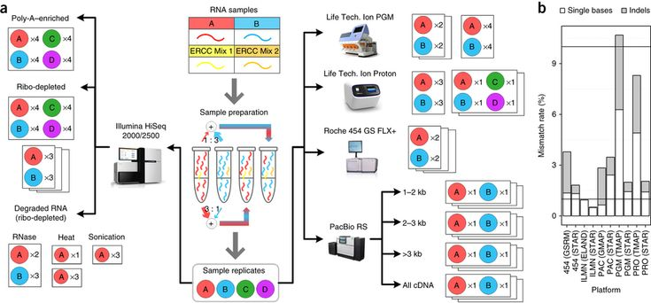 Here the authors describe the Association of Biomolecular Resource Facilities next-generation sequencing (ABRF-NGS) study on RNA-seq. A team...