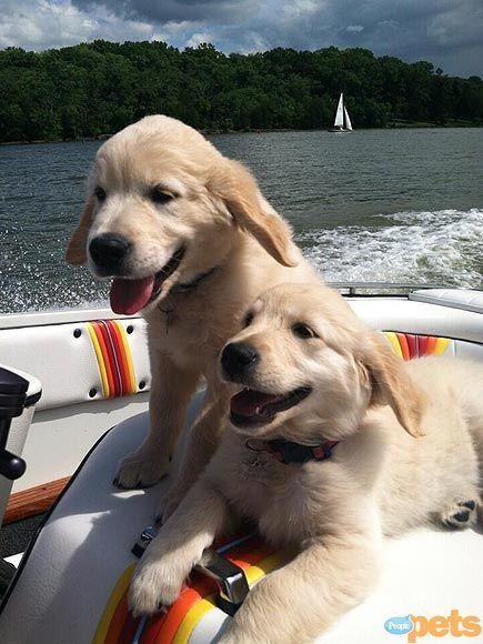 pals having fun on the lake