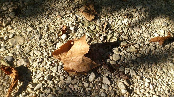 Valami vége, valami kezdete.. -leaf