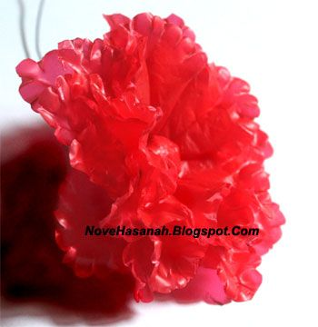 Nove Hasanah: Bunga Cantik Kreasi Kantong Plastik