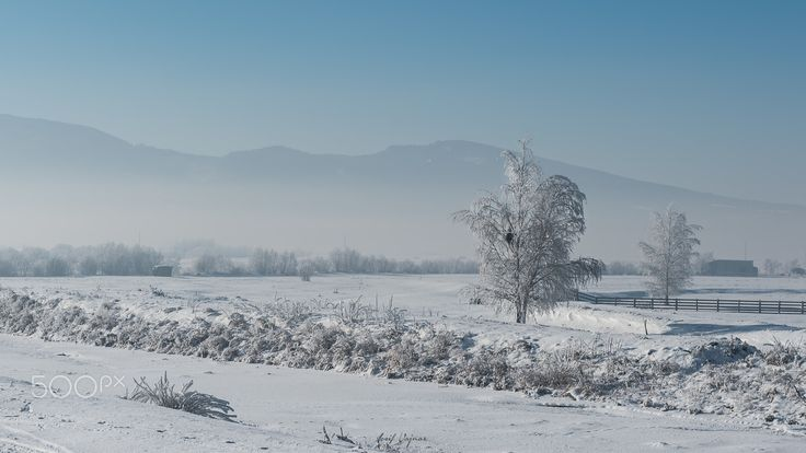 Transylvanian winter - null