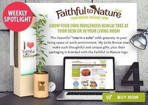 """Grow your own indigenous bonsai tree at your desk or in your living room. This beautiful """"tree in a tube"""" adds greenery to your living space or work environment; it is a wonderful gift for any friend or co-worker with a love of the natural world."""