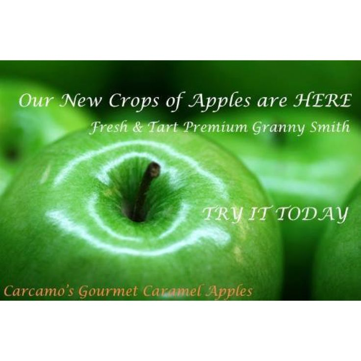 OUR NEW CROP OF GRANNY SMITH APPLES ARE HERE! Plump, fresh, tart and most of all JUMBO. Be sure to try our new harvest today.  Order now ---> www.carcamoscaramelapples.com.au