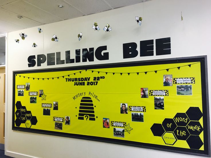 Whole School Spelling Bee Competition Bulletin Display Board