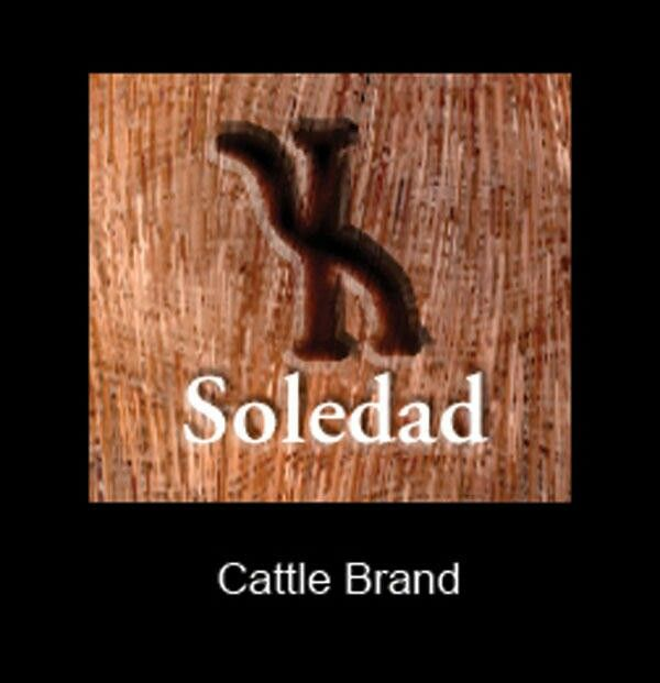 31 best images about brands on pinterest logos cattle