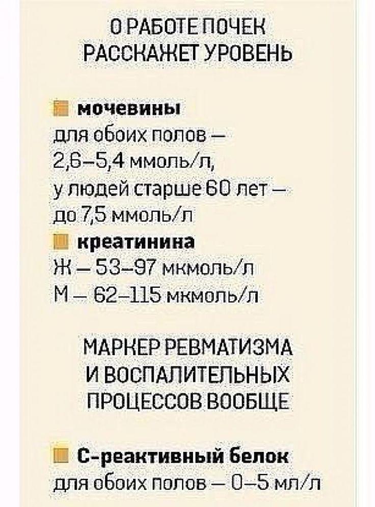 WzTrtD3_zd4_783x0