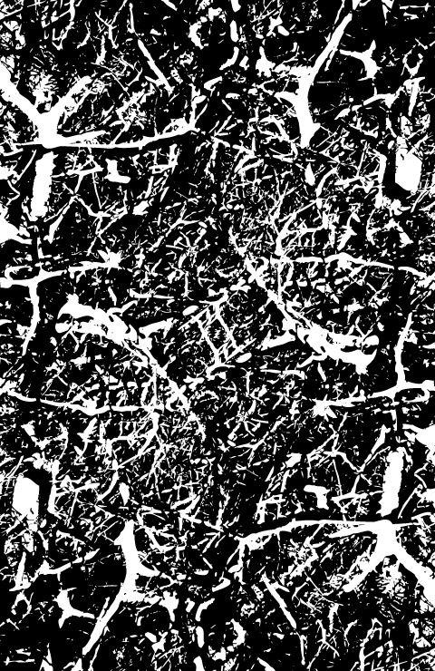 Black Burnt Briar Patch