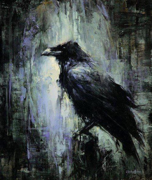 drawing art birds artist artwork nature bird raven darkness goth ...