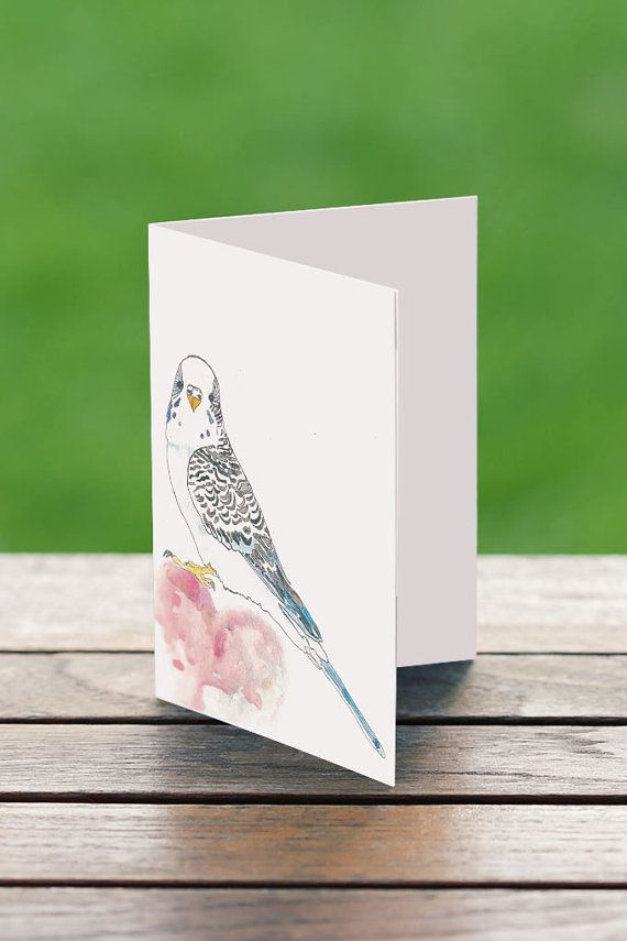 Greeting Cards Australia  A6 Budgie Love by PaperJamink on Etsy