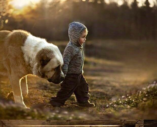 """Il vero amico, non ti chiede dove vai. Ti dice:"""" Dammi la mano, ti accompagno!"""""""