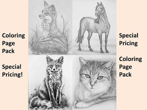 Coloring Pages For Adults Homes : Best printable coloring pages beautiful animal art images on
