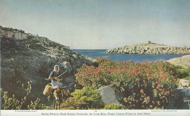 46 σπάνιες φωτογραφίες του National Geographic από την Κύπρο του 1928 [η συνέχεια] | City Free Press