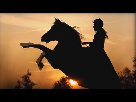 """""""Небесные Кони"""" - Величественная красота и грация http://kollegatv.ru/"""