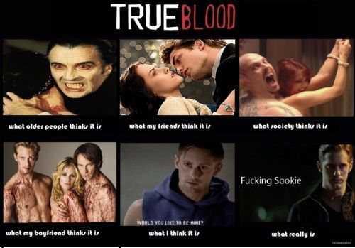 What people think of True Blood...     How funny!