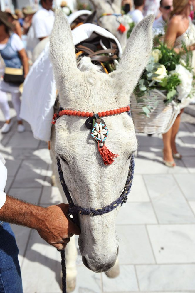 White Mules.  Protestant Wedding in the Greek Islands. Greek Island  Wedding Inspirations by Stella & Moscha