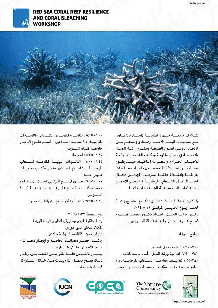 Workshop Agenda - Arabic