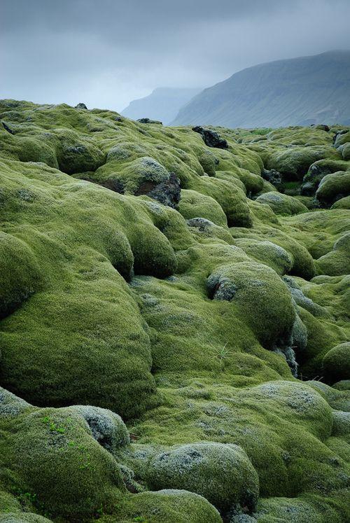 Lava fields in Iceland ~ by the london eye