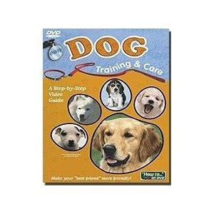 Easy Dog Training