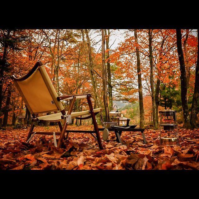 . . 秋が深まり落葉が始まったこの場所も明日は雪が降るらしい どーりで武井の温かさが心地いいはずだ . 雪中キャンプはここでやろーと思う . #晩秋 #岐阜 #武井バーナー #ソロキャンプ #紅葉キャンプ #秋キャンプ