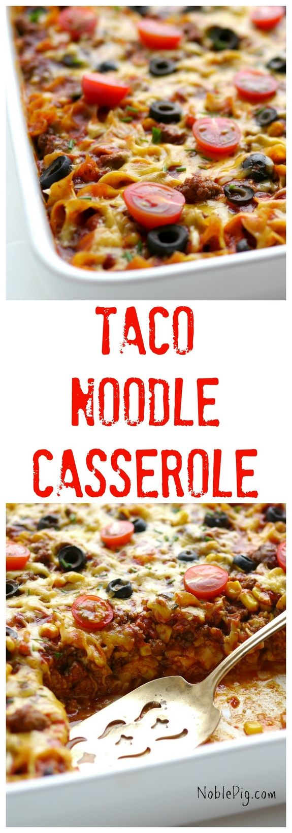 Taco Noddle Casserole is a wonderful weeknight family dinner everyone will enjoy. Packed with flavor and so easy to make.