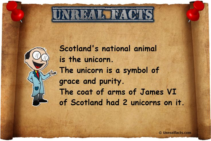 Scotland's National Animal Is A Unicorn - Unreal Facts