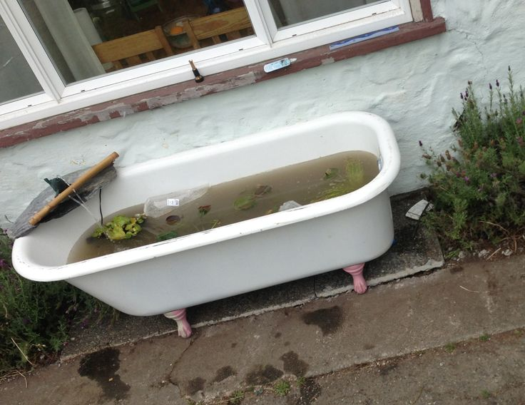Fish pond claw foot bath tub love my up cycling for Claw foot soaker tub