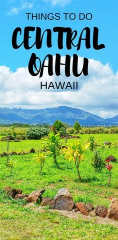 Central Oahu: Hawaii vacation tips with things to do in Oahu on west side of Waikiki and Honolulu as paid and free activities like hiking, Pearl Harbor, Hawaiian culture activities, with interactive Oahu map. Checklist of Oahu activities for world travel bucket list destinations in USA! Use as potential day trip itinerary as a self-guided driving tour to see Hawaii on a budget with adventure! Put gear on Hawaii packing list, think of what to wear in Hawaii for hiking... #hawaii #oahu