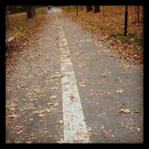White autumn line