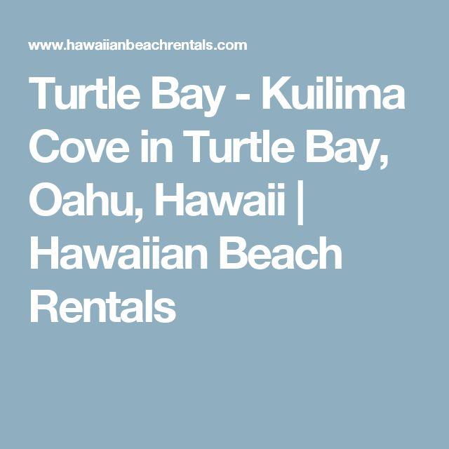 25 beautiful turtle bay ideas on pinterest turtle bay