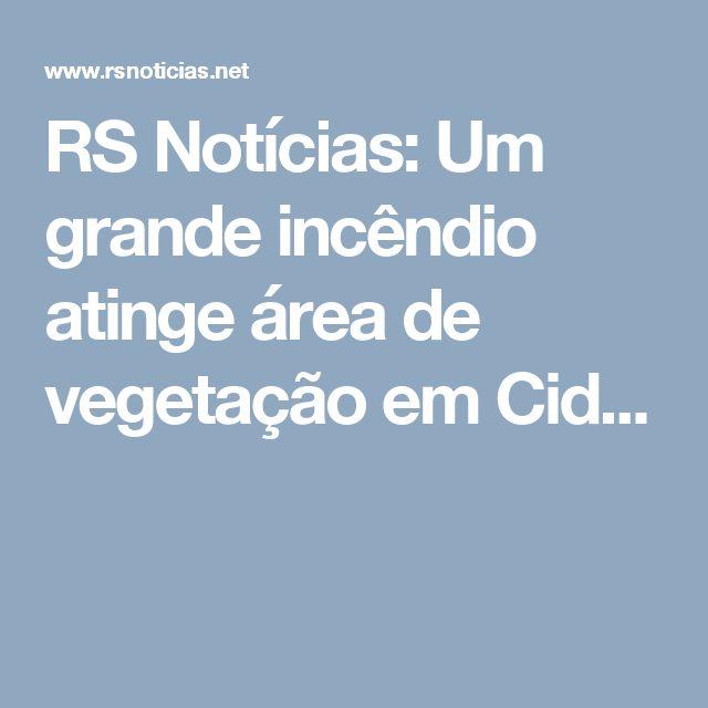 RS Notícias: Um grande incêndio atinge área de vegetação em Cid...