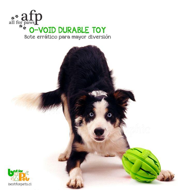 Nuevo, nuevo, nuevo!! Consigue este juguete para perros en nuestra tienda. Tu perro lo amará❤