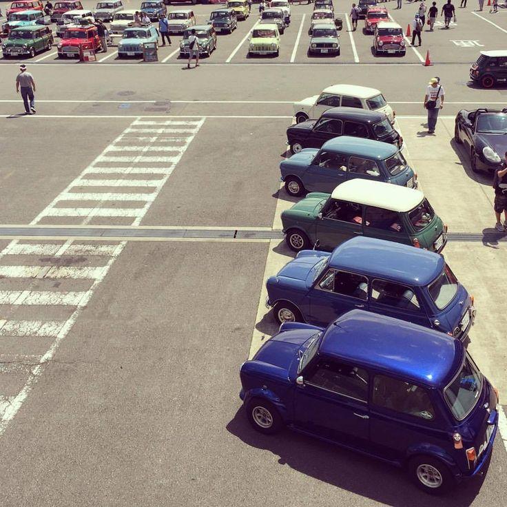 """oldmini106:  """"ミニさんはやっぱりかわゆい  #classicmini #classicminicooper #austinmini #morrismini #blmini #rovermini #クラシックミニ #ローバーミニ #オースチンミニ #モーリスミニ  #blミニ #lovecars #jpmini #32fes #fujispeedway #lovecars (富士スピードウェイ 国際レーシングコース)  """""""