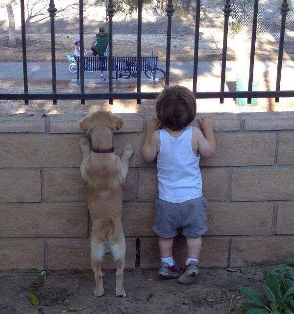 """dog:""""what are they riding?"""" kid: """"they're riding bikes"""" dog:""""what is 'riding'?"""" kid:""""what's a 'they'?"""""""