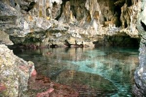 One of Niue's greatest drawcards is the crystal clear visibility, caused by the limestone makeup of the island. This also means there are lots of beautiful caves to explore. One leads to a stalactite chamber full of huge coconut crabs, and one leads to a chamber where seasnakes lay their eggs.