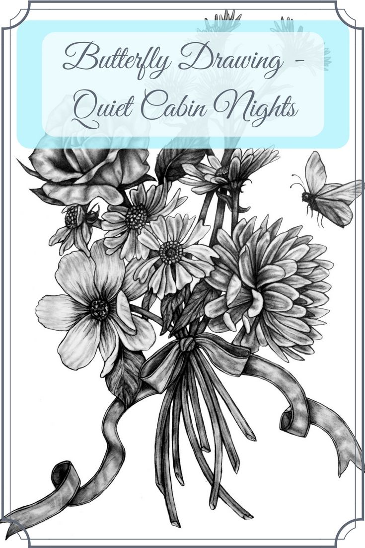 Butterfly Drawing - Quiet Cabin Nights - Artfully Creative Life