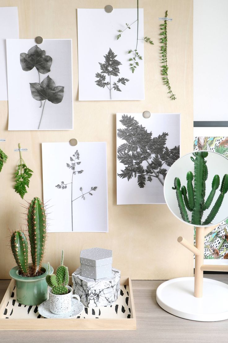 Botanische wanddecoratie by @myattic